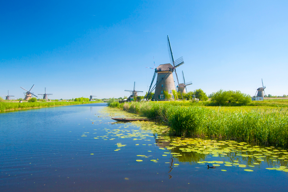 European Office - Infodev EDI inc- Located in the Netherlands